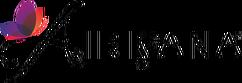 airisana-logo-final-1